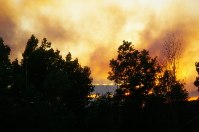 Waldo Canyon Fire Day Two