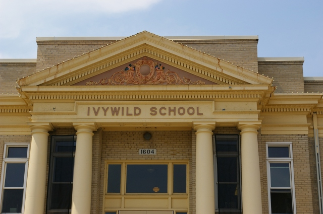 Ivy Wild School