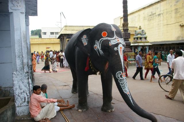 Blessing Elephant