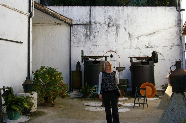 Dona at Olive Vineyard