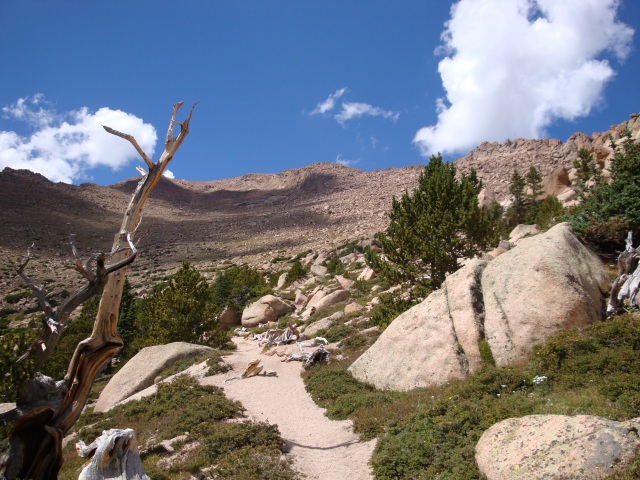 Barr Trail at Tree Line