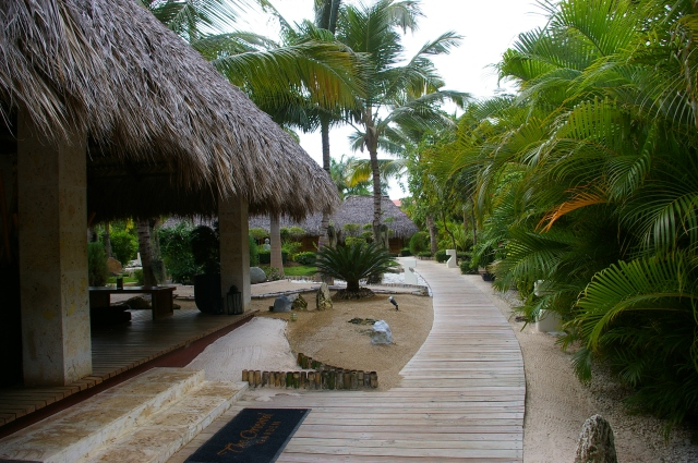 Secluded Boardwalk
