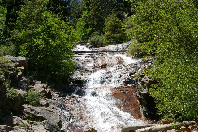Water Fall in the Mountains of Colorado