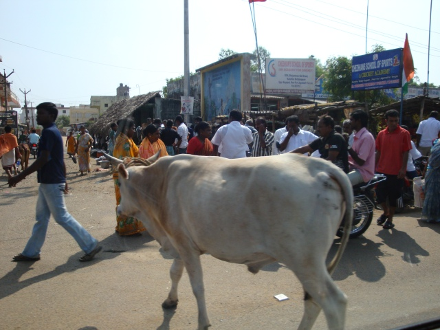Streets of Chennai