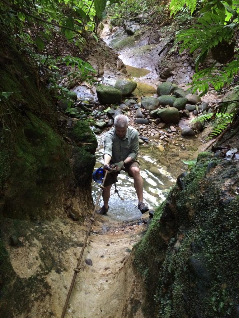 Climbing up a Waterfall