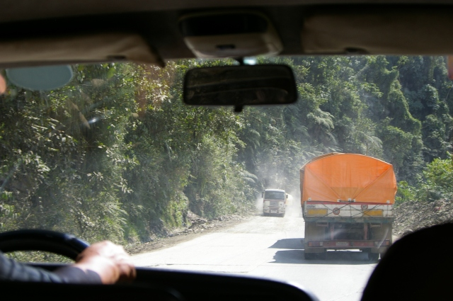 Driving in the Jungle