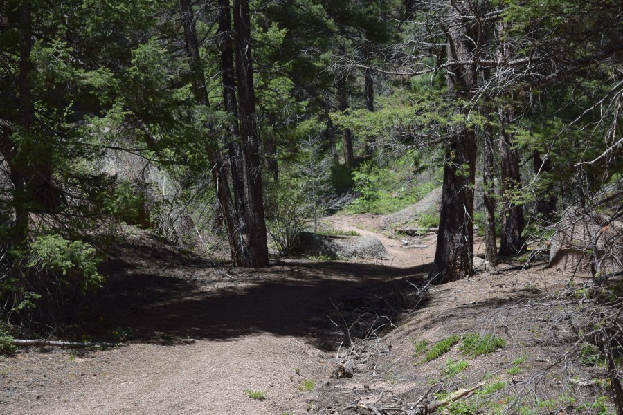The Side Trail that We Took