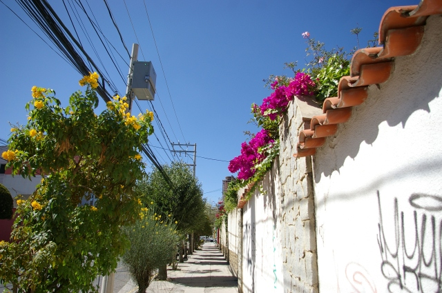 Walking the Streets of La Paz