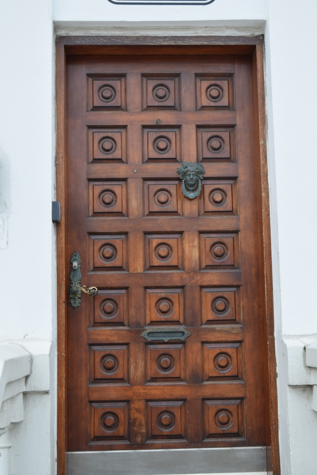 Old Wooden Door in Reykjavik, Iceland