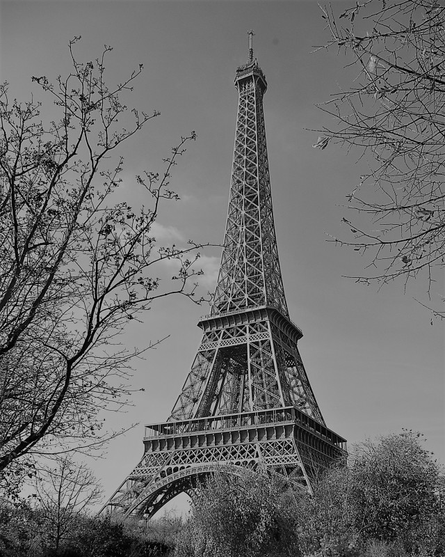 eiffel_tower_bw_cropped